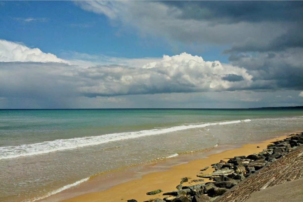 Shore excursions from Le Havre, Cherbourg or Honfleur